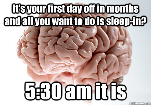 its your first day off in months and all you want to do is  - Scumbag Brain