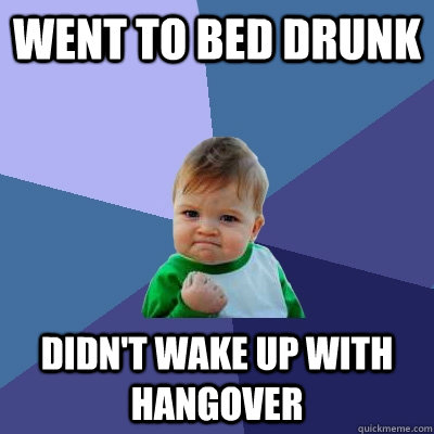 went to bed drunk didnt wake up with hangover - Success Kid