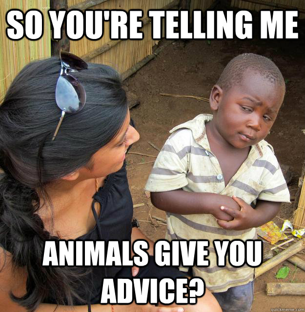 so youre telling me animals give you advice - Sceptical 3rd world child