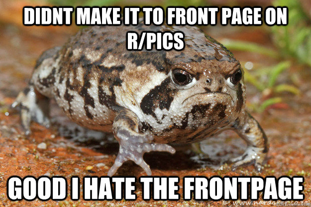 didnt make it to front page on rpics good i hate the frontp - Grumpy Toad
