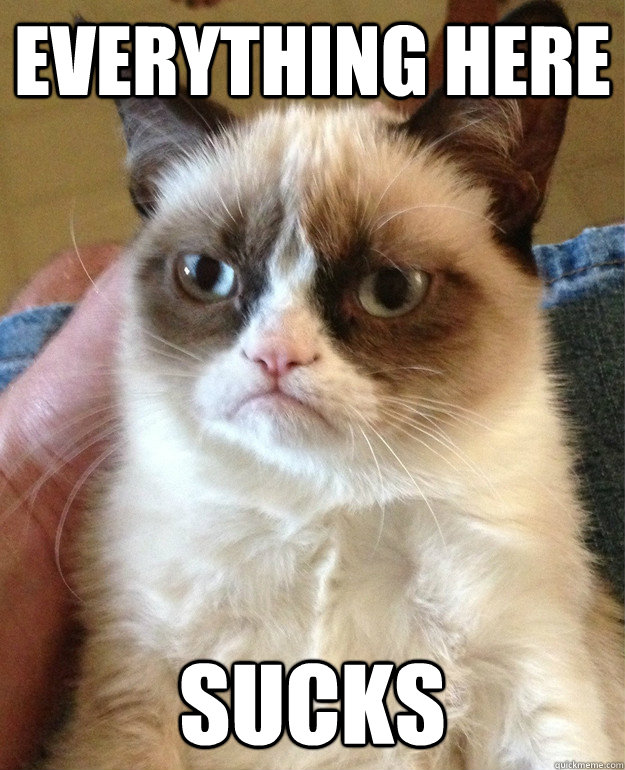 everything here sucks - Grumpy Cat