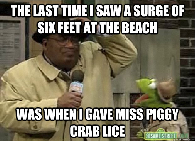 the last time i saw a surge of six feet at the beach was whe - Foul Storm Joke Frog