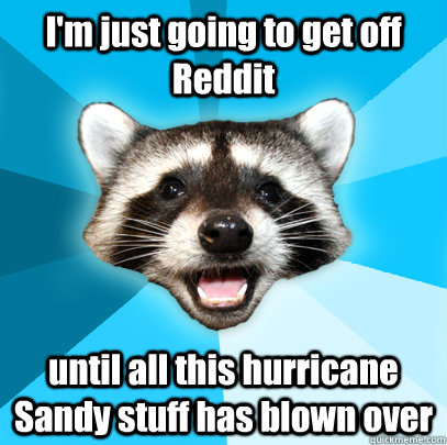 im just going to get off reddit until all this hurricane sa - Lame Pun Coon