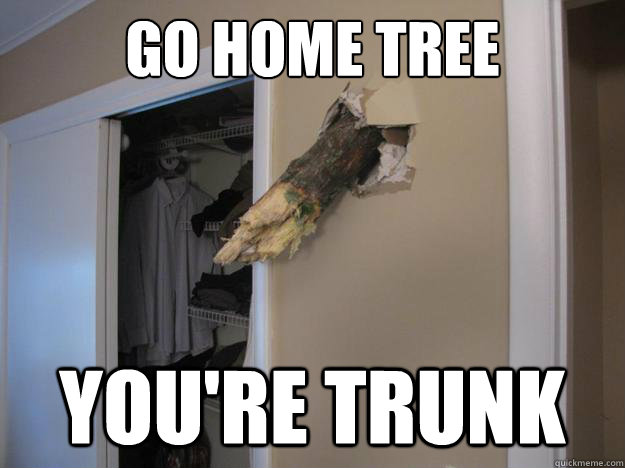go home tree youre trunk - Sandy Drunk Tree