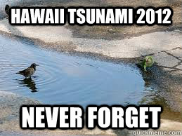 hawaii tsunami 2012 never forget - We will never forget Isaac!