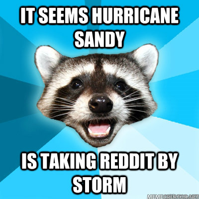 it seems hurricane sandy is taking reddit by storm  - Lame Pun Raccoon