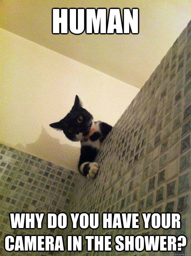 human why do you have your camera in the shower - Incredulous Cat