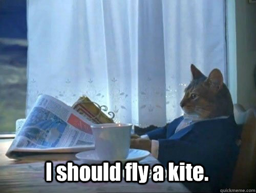 i should fly a kite  - Fancy Cat