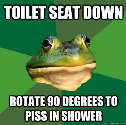 toilet seat down rotate 90 degrees to piss in shower - Foul Bachelor Frog