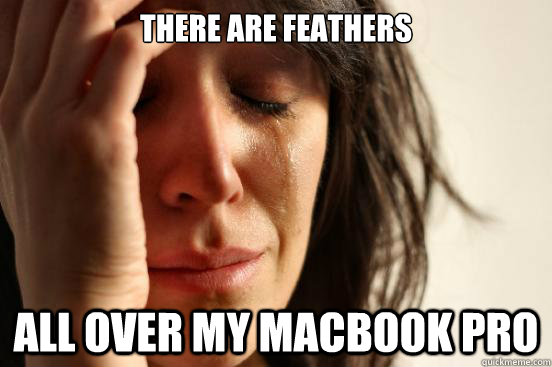 there are feathers all over my macbook pro - First World Problems