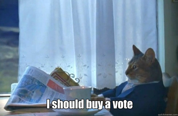 i should buy a vote - Sophisticated Cat