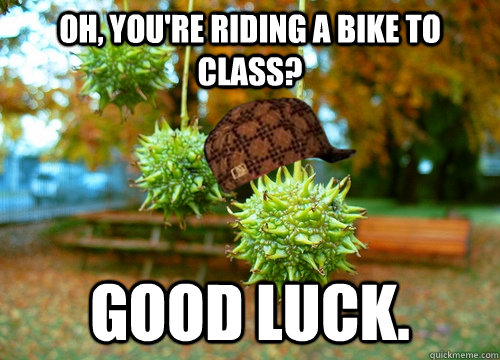 oh youre riding a bike to class good luck - Scumbag Sweet Gum