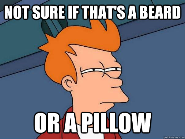 not sure if thats a beard or a pillow - Futurama Fry