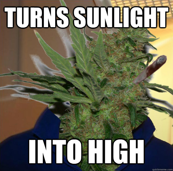 turns sunlight into high - 