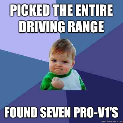 Picked the entire driving range didnt text my e - Success Kid