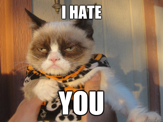 i hate you - 