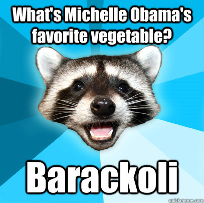 whats michelle obamas favorite vegetable barackoli  - Lame Pun Coon