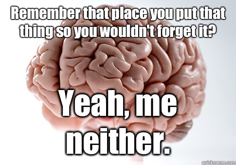 Remember that place you put that thing so you wouldnt forget - Scumbag Brain