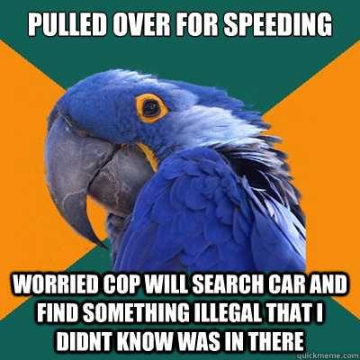 pulled over for speeding worried cop will search car and fin - Paranoid Parrot