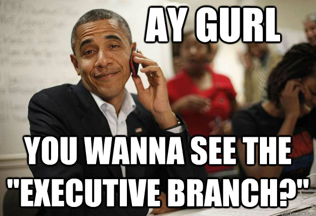 ay gurl you wanna see the executive branch -