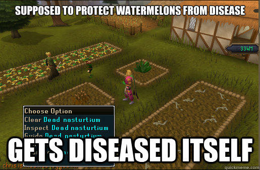 supposed to protect watermelons from disease gets diseased i - Scumbag Nasturtium