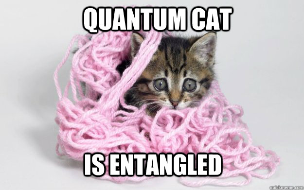 quantum cat is entangled - Quantum CAt