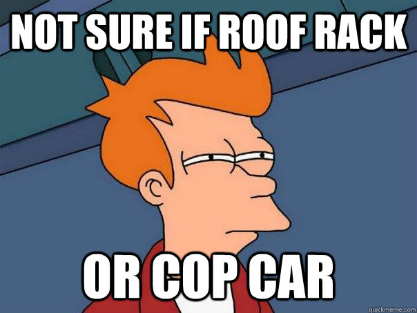 not sure if roof rack or cop car - Futurama Fry