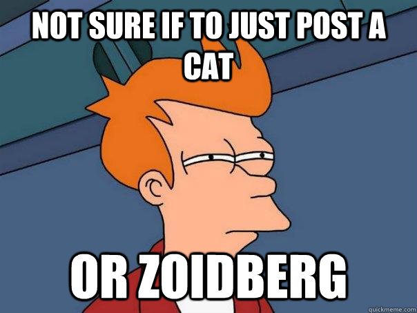 not sure if to just post a cat or zoidberg - Futurama Fry