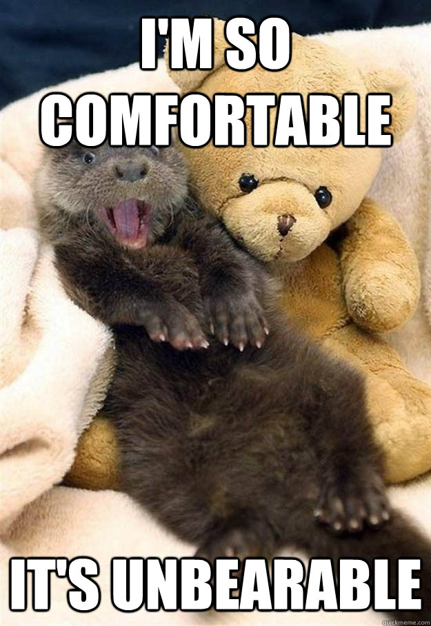 im so comfortable its unbearable -