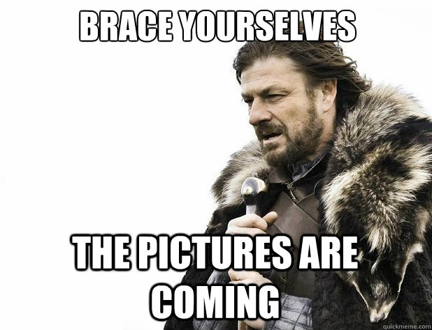 brace yourselves the pictures are coming - Brace Yourself