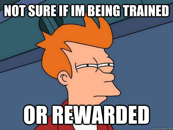 not sure if im being trained or rewarded - Futurama Fry