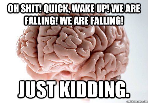 oh shit quick wake up we are falling we are falling jus - Scumbag Brain