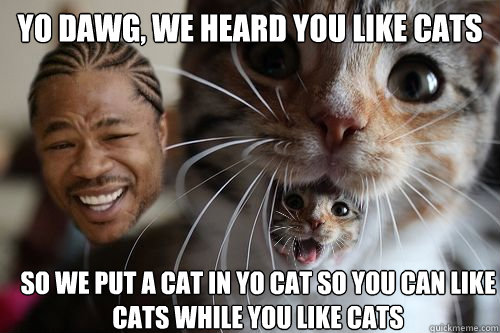 yo dawg we heard you like cats so we put a cat in yo cat so - Yo dawg, we heard you like cats