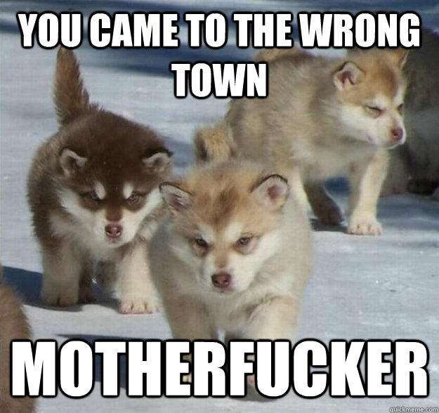 you came to the wrong town motherfucker - wrongtown