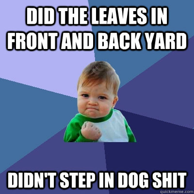 did the leaves in front and back yard didnt step in dog shi - Success Kid
