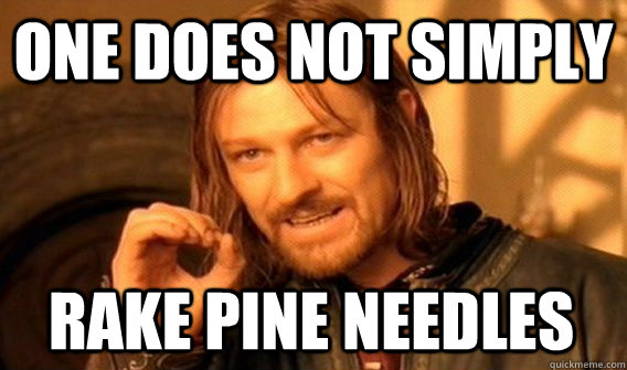 one does not simply rake pine needles - One Does Not Simply