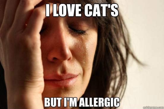 i love cats but im allergic - First World Problems