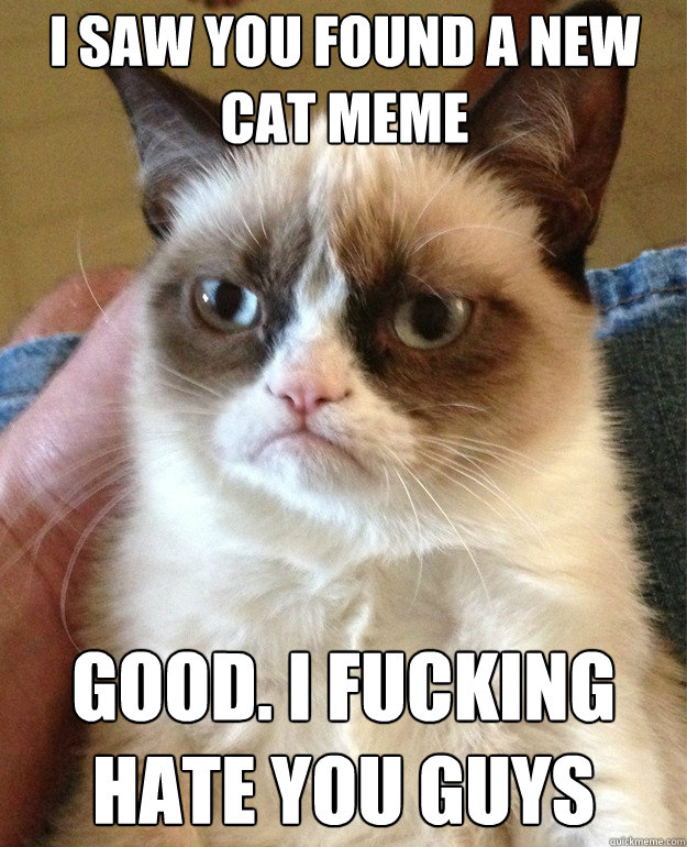 i saw you found a new cat meme good i fucking hate you guys - Grumpy Cat