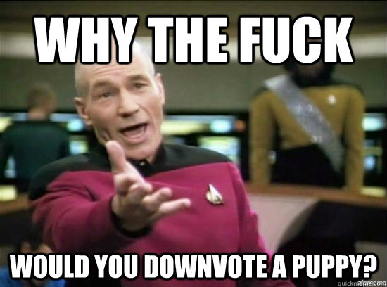 why the fuck would you downvote a puppy - why the fuck picard