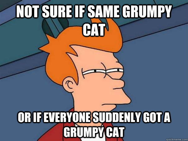 not sure if same grumpy cat or if everyone suddenly got a gr - Futurama Fry