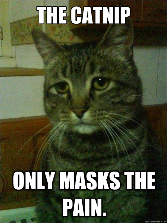 the catnip only masks the pain - Depressed Cat