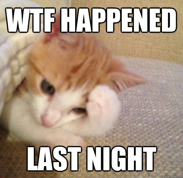 wtf happened last night - WTFCAT