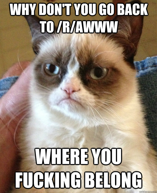 why dont you go back to rawww where you fucking belong - Grumpy Cat
