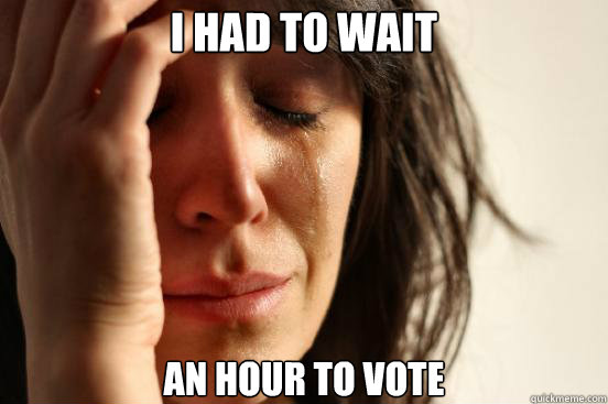 i had to wait an hour to vote - First World Problems