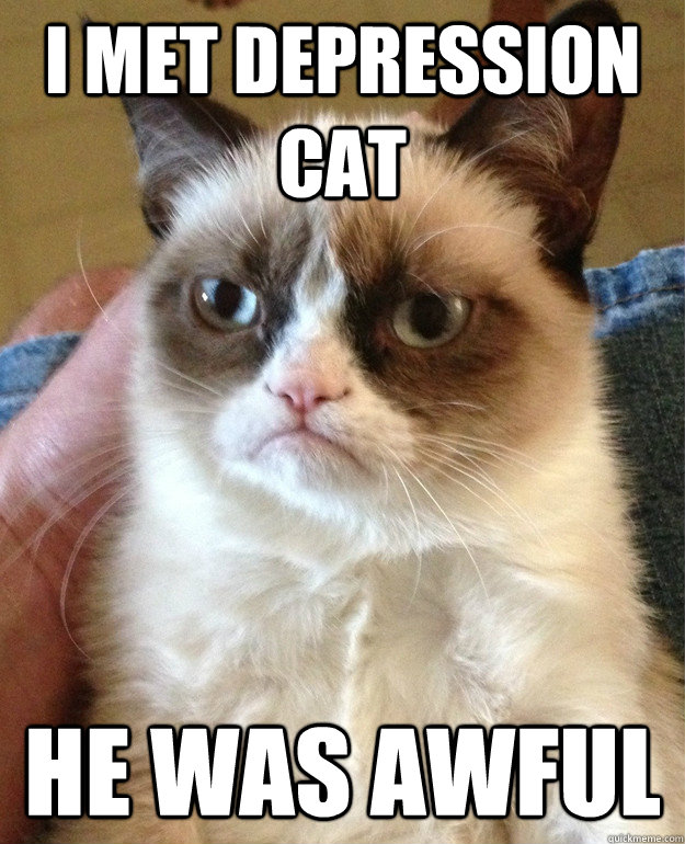i met depression cat he was awful - Grumpy Cat