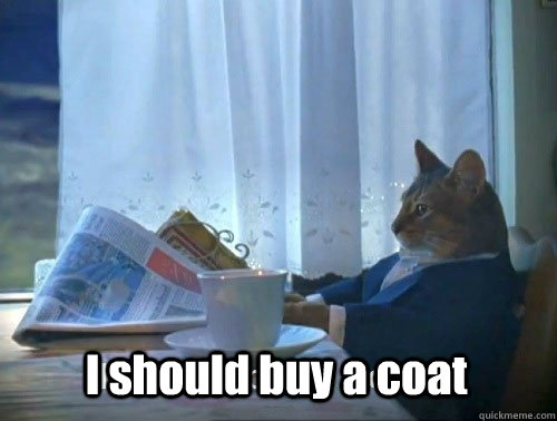i should buy a coat - Fancy Cat