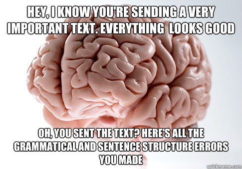 hey i know youre sending a very important text everything - Scumbag Brain