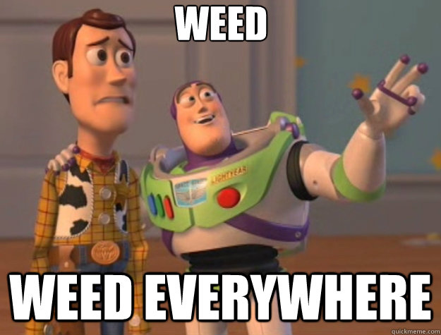 weed weed everywhere - Toy Story