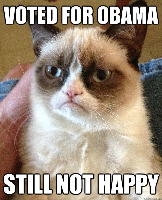 voted for obama still not happy - Grumpy Cat