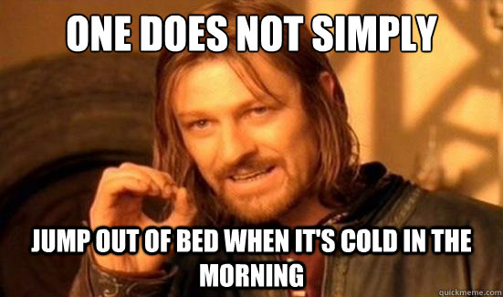 one does not simply jump out of bed when its cold in the mo - Boromir